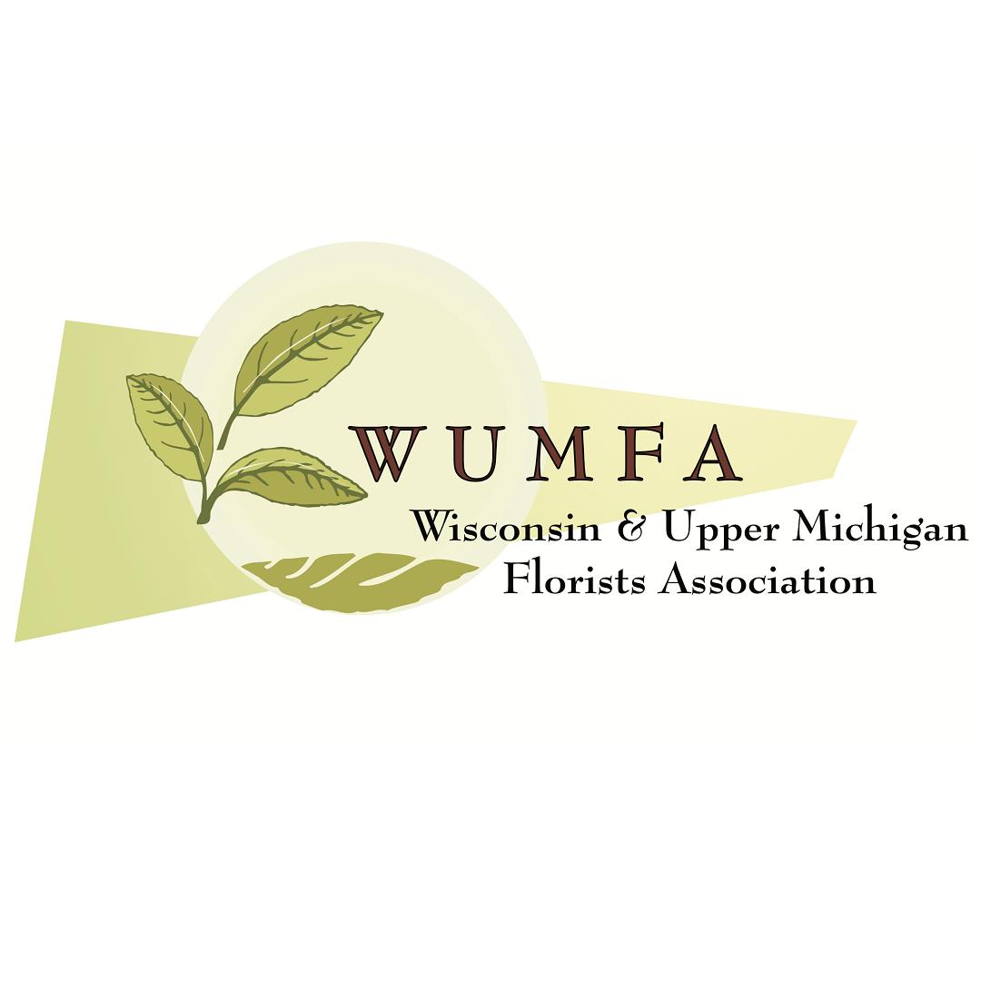 2021 Virtual WUMFA Annual Convention Logo